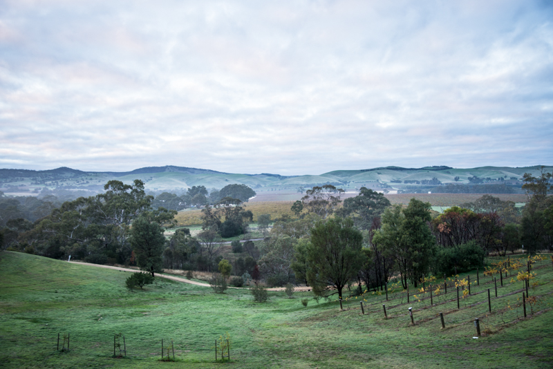 Novotel, Barossa Valley