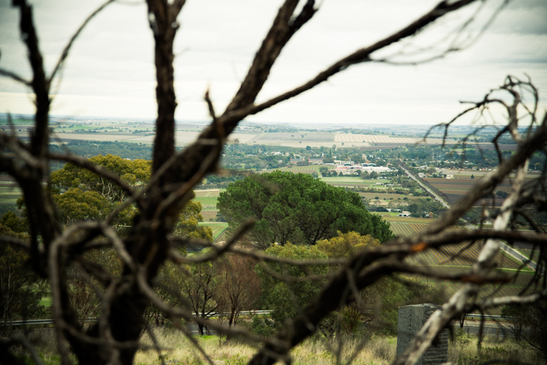 Highest Lookout Point in Barossa Valley