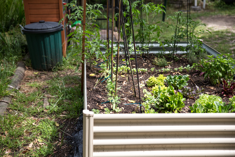 Veggie Patch - Cook Republic