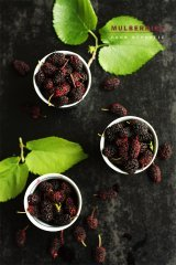 Fresh Mulberries - Sneh Roy
