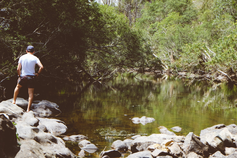 Barrington Tops - Cook Republic