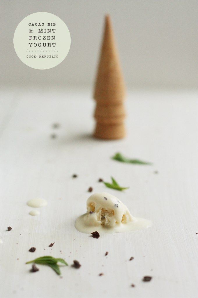 Cacao Nib And Mint Frozen Yogurt - Cook Republic