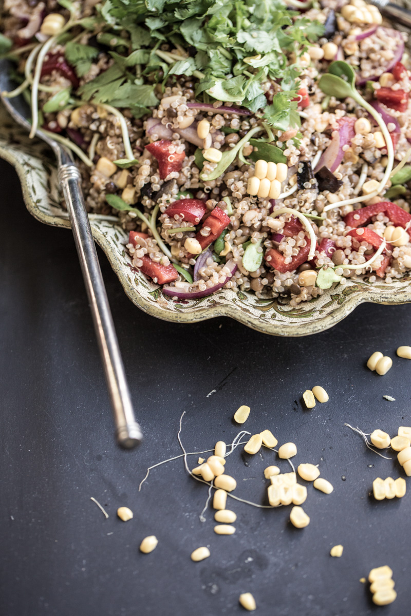 Quinoa Lentil And Smokey Eggplant Salad - Cook Republic