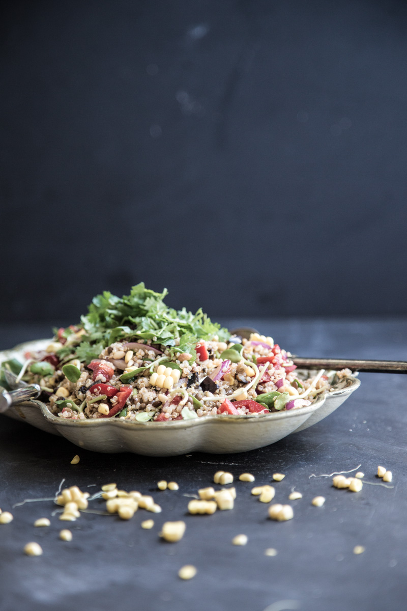 Quinoa And Smokey Eggplant Salad - Sneh Roy, photography and styling