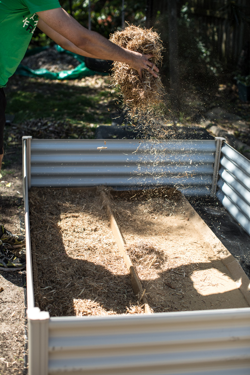 Planting A Spring Veggie Patch - Cook Republic